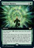 [日本語版]【FOIL/通常】《新緑の熟達/Verdant Mastery》(STX)※拡張アート